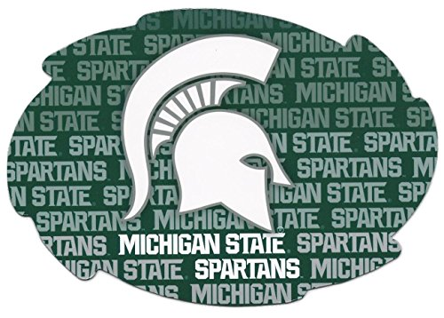 Michigan State Spartans Magnets - 8