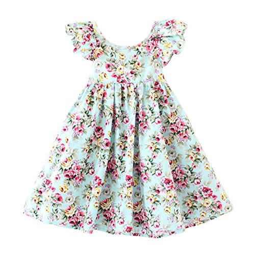 Glamulice Baby Girls Vintage Floral Dress Summer Casual Cotton Flower Backless Straps Beach Dresses (Old Navy Dress Blue)