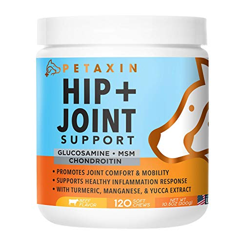 Petaxin Glucosamine for Dogs - Advanced Hip and Joint Supplement - Support for Dog Joint Pain Relief and Dog Mobility - With Chondroitin, MSM, Turmeric, & Yucca - All Ages & Sizes -120 Chews