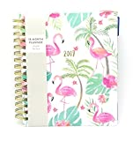 JULY 2018-DECEMBER 2019 - Eccolo Daily Planner Spiral with Color Tabs - Hard Cover 18 Monthly Planning Calendar - 7'' x 8 3/4 PINK FLAMINGO