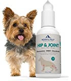 NOAH & TILLY Glucosamine Chondroitin for Dogs Tasty Chicken Flavor - All Natural Joint Pain Relief for Hip and Joint Health - Our Glucosamine for Dogs Supplements for Joints are USA Made & Guaranteed