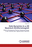 Hole Dynamics in a 2d Quantum Antiferromagnet, Satyaki Kar, 3846597104
