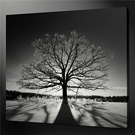 Black And White One Tree Hill Quality Canvas Print Picture Wall Art Wall Art Painting Pictures & Black And White One Tree Hill Quality Canvas Print Picture Wall Art ...