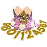 JAMSTONE Crown Dog Birthday Hat Reusable Doggie Birthday Party Hat for Pets Glitter Crown Hats for Dogs Cats Kitten Headband Hats Pink