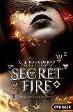 Secret Fire. Die Entflammten: (Band 1)