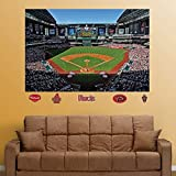 Fathead MLB Inside Stadium Mural Wall Decal