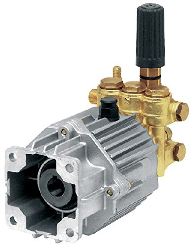 AR North America SJV3G27D-EZ 3100 PSI/3.0 GPM Annovi Reverberi Direct Drive Pump with Easy Start