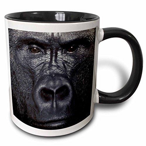- 3dRose 9907_4 Lowland Gorilla-Two Tone Black Mug, 11 oz, Multicolored