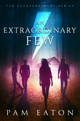 An Extraordinary Few (The Extraordinary Series) (Volume 1)