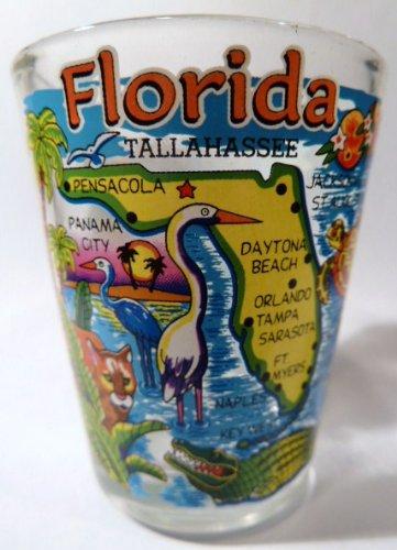 Florida Blue Map Shot Glass