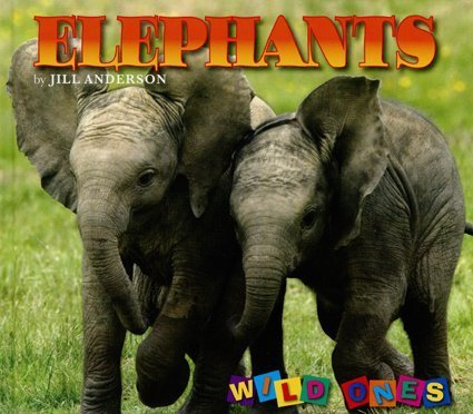 Download Elephants (Wild Ones) pdf