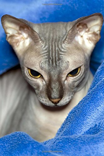 Don Sphinx Cat Glares at You Journal: 150 page lined ()