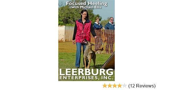 leerburg dog training dvd torrent
