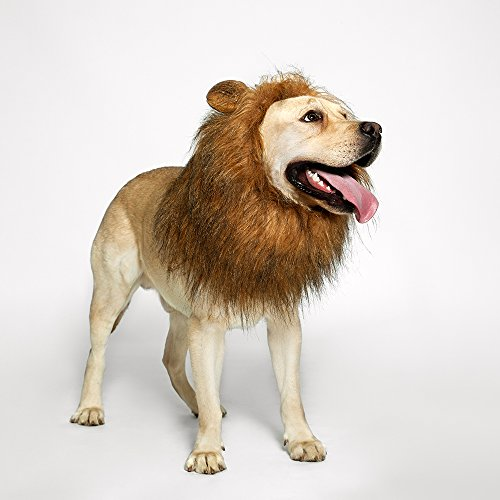 (TOMSENN Dog Lion Mane - Realistic & Funny Lion Mane for Dogs - Complementary Lion Mane for Dog Costumes - Lion Wig for Medium to Large Sized Dogs Lion Mane)