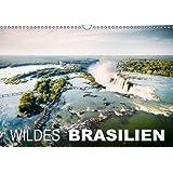 Wildes Brasilien (Wandkalender 2014 DIN A3 quer): Die grüne Lunge der Welt (Monatskalender, 14 Seiten)