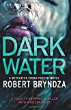 Dark Water: A Totally Gripping Thriller with a Killer Twist: Volume 3 (Detective Erika Foster)