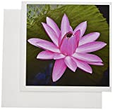 3dRose Decorative colorful garden botanic classic plant water lily green red flower - Greeting Cards, 6 x 6 inches, set of 12 (gc_128195_2)