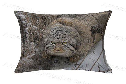 POPULARE 20x30inch Pillow Protector Pallas's Cat Pillow Cover Home Decorative Kids Gift Pillow Cushion Cover(Twin Sides)
