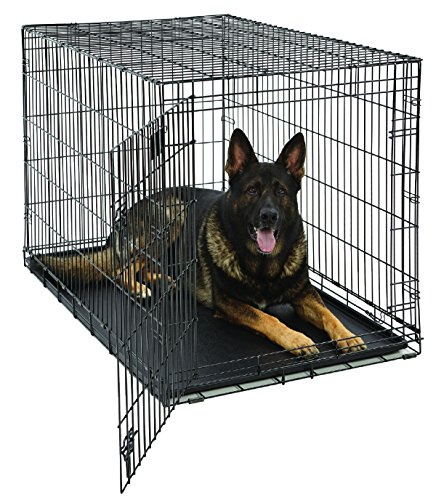 XL Dog Crate | MidWest Life Stages Folding Metal Dog Crate | Divider Panel, Floor Protecting Feet, Leak-Proof Dog Tray | 48L x 30W x 33H Inches, XL Dog Breed from MidWest Homes for Pets