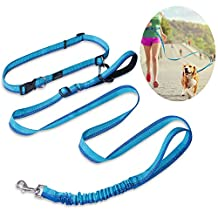 Hands Free Dog Leash, PETBABA 4-6ft Long Bungee Adjustable Reflective Dog Running Leash with Double Handle in Blue