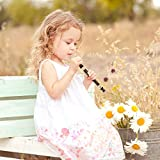 Soprano Recorder Descant Flauta Recorder 8 Hole ABS Clarinet German Style Treble flute C Key for Kids Children With Fingering Chart Instructions with Cleaning Rod Bag