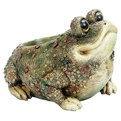 Michael Carr Designs Kenzie Toad Planter