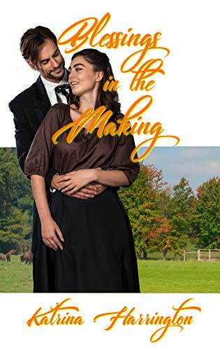 Blessings in the Making (Blessings in Disguise Book 2) (English Edition)