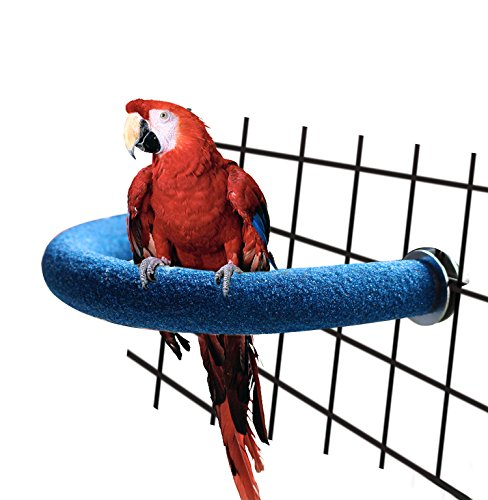 RYPET Parrot Perch Rough-surfaced - Quartz Sands Bird Cage Perches for Medium to Large Bird, U Shape Large ()