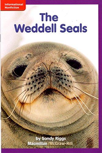 The Weddell Seals