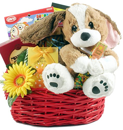 Gift Basket Village TLC for Your Recovery, A Get Well Gift Set for Kids