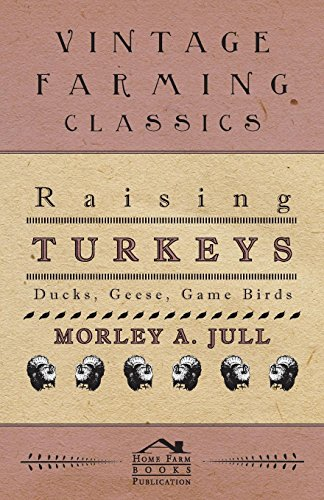 Raising Turkeys - Ducks, Geese, Game Birds