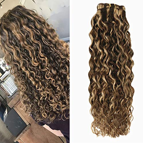 Hetto Wavy Hair Extensions Human Hair 12 Inch Double Weft Clip in Human Hair Extensions #4 Brown Highlighted with #27 Blonde Natural Clip in Hair Extensions for Black Women 100Grams 7pcs ()