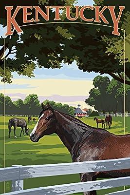 Kentucky - Thoroughbred Horses Farm Scene