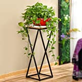 Flower stand single iron multi-storey indoor multi-functional solid wood flower frame American living room balcony simple solid wood flower rack ( Size : 3030100cm )