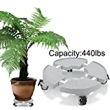 Indoor Outdoor Plant Stand with Wheels Flower Pot Stands on wheels Down Under Large Removable Plant Caddy Plant Dolly Heavy Duty for Large Heavy Planter Rolling Tray Coaster 20 inch 440lbs capacity Review
