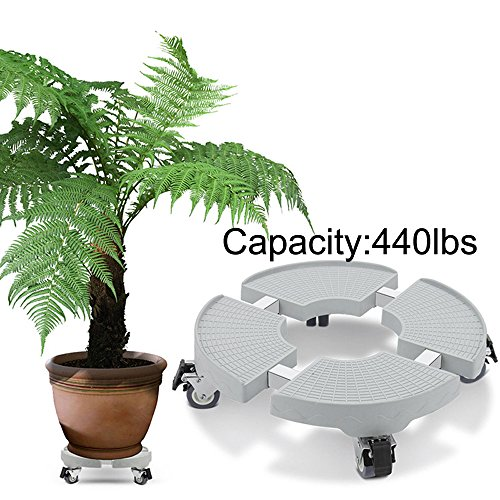 Indoor Outdoor Plant Stand with Wheels Flower Pot Stands on wheels Down Under Large Removable Plant Caddy Plant Dolly Heavy Duty for Large Heavy Planter Rolling Tray Coaster 20 inch 440lbs capacity by DEWEL
