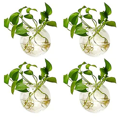 Nuptio 4 Pcs Wall Terrarium Hanging Glass Planters 4 Inches Diameter Round Glass Plant Pot – Water Planting Vases Air Flower Vase Plant Terrariums Plant Container (4 Pcs)