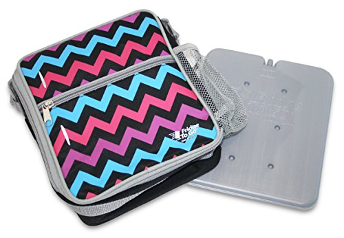 Insulated Lunch Bags In Refrigerator - 6