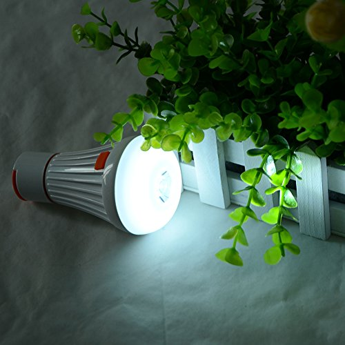 GVDOR LED Multi-function Bulb Backup Emergency Light for Power Outage Camping Outdoor Activity Hurricane 3W-(6+1) LED (3w Break Light Outdoor)
