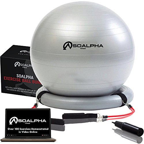 SoAlpha Premium Exercise Ball with 15LB Resistance Bands, Stability Base, Pump, 65 CM Fitness Ball, Supports up to 600LBS, Stability Ball with Gym Quality Resistance Bands, Great for Home & Office – DiZiSports Store