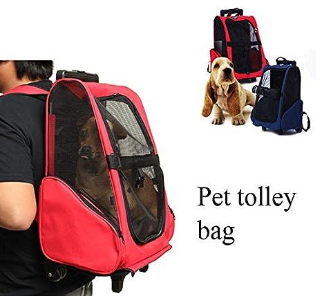 Coeus Mascota del gato del perro portador mochila con ruedas carro mochila de viaje para perros y gatos bolsa de equipaje portátil: Amazon.es: Hogar