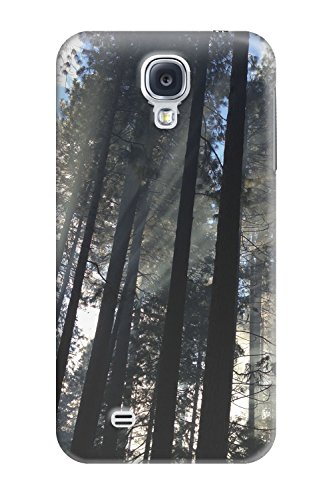 Yosemite Valley Trees - Photo by Mike Petrucci - Slim Phone Case - Samsung Galaxy - Fashion Tmobile Valley