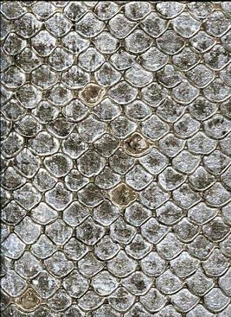 17101 Roberto Cavalli 6 Snakeskin Black Gold Wallpaper