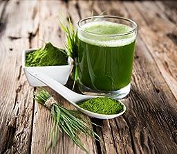 Recovita Organic Spirulina Powder – Powerful Natural Vitamin & Cellular Health Supplement for Men & Women - 225g Jar - Non GMO and Organic Certified