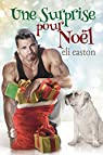 Une surprise pour Noël par Easton