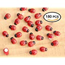 HoneyToys 180Pcs Painted Wooden Ladybug/Self Adhesive/Craft/Decorations/Home Decor/Plants 10x13mm (Red)