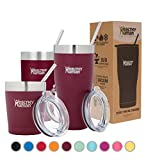 Best Tumblers With Straw Cups - Healthy Human Insulated Stainless Steel Tumbler Cruisers Review