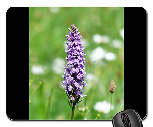 Mouse Pads - Heath Spotted Orchid Orchid Flower Blossom ()