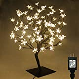 PMS 23inch 90 LEDs Cherry Blossom Desk Top Bonsai Tree Light with Low Voltage Transformer, UL Listed, Ideal for Christmas, Party, Wedding, Ceremony, Celebration Decoration (Warm White)