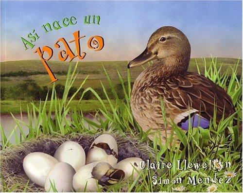 Asi Nace...un Pato por C. Llewellyn
